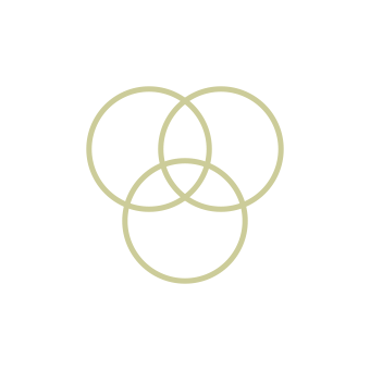 icon_rings_yellow.png